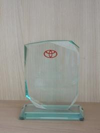 TMMI cost award 2011